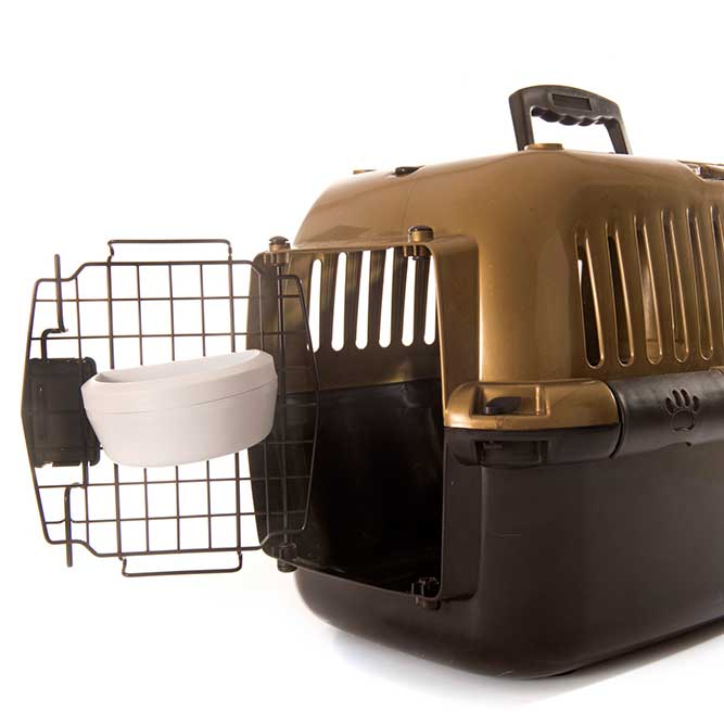 dog crate with water bottle