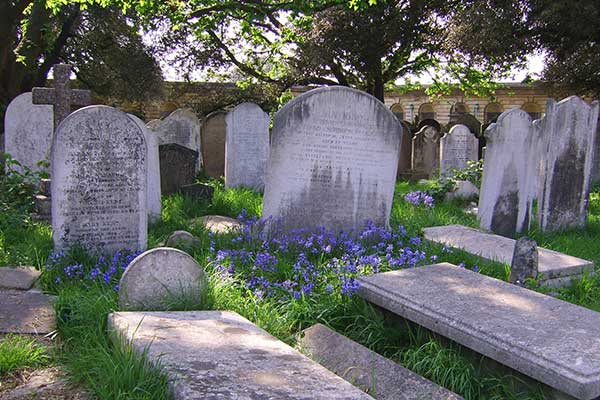 brompton cemetery earls court