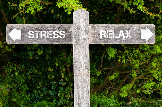sign of stress and relax