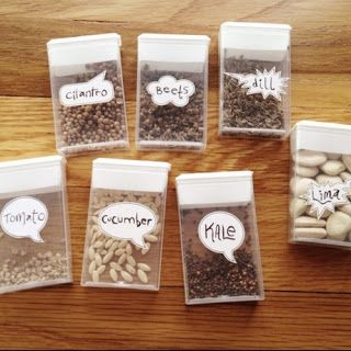 Tic Tac Container for Seed Storage