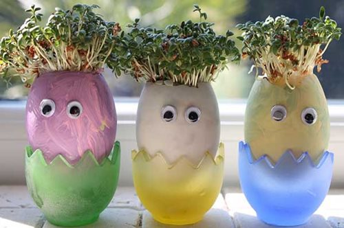 Cress-Egg-Heads.jpg