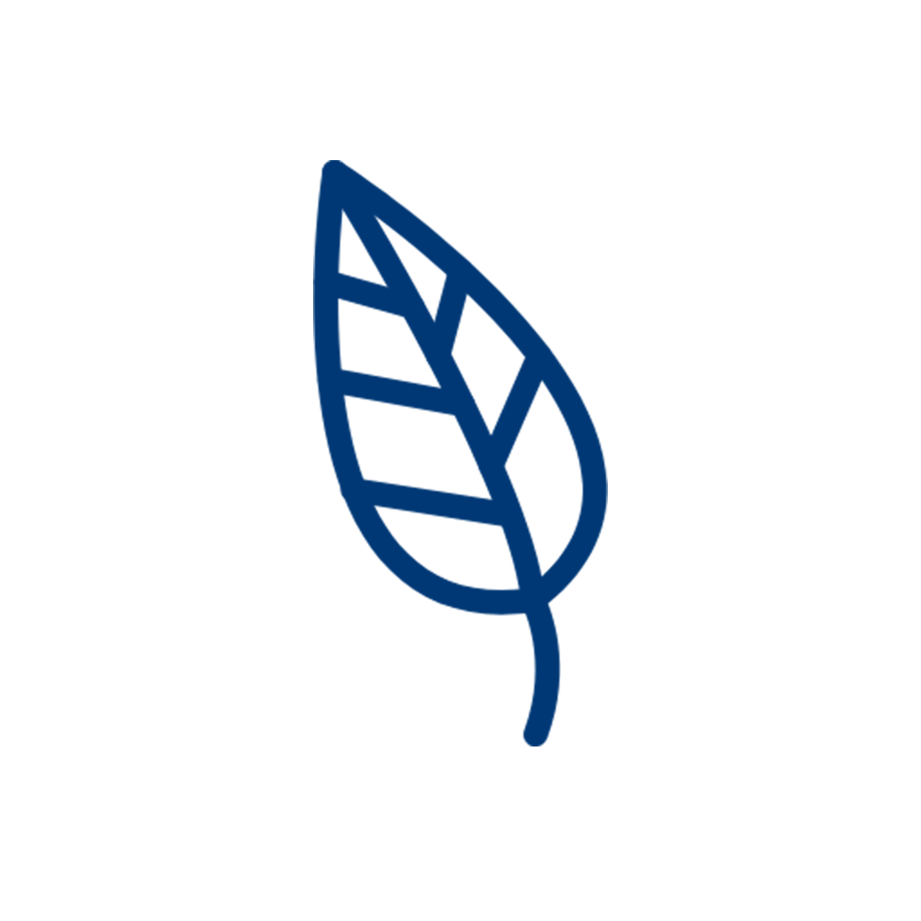Leaf-icon.png