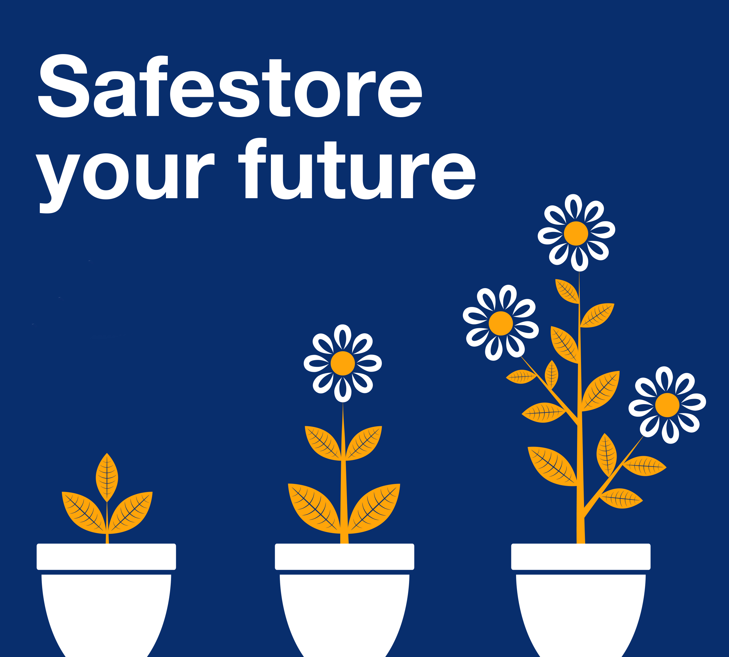 Safestore-your-future.jpg